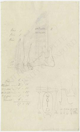 Sketches of feet, partial Egyptian scene with cartouche of Psammetikhos II (Neferibra) and variou...