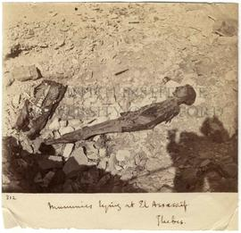 [312] Mummies lying at El Assassif. Thebes.