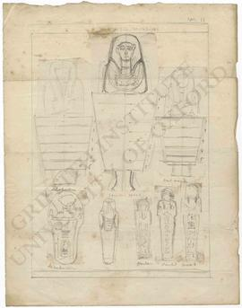Eight sketches of shabtis in Dr Lee's collection