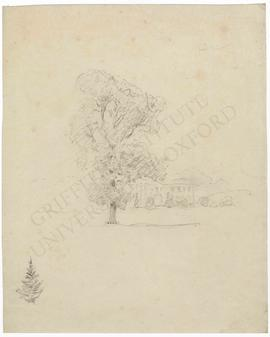 Landscape with house and tree, and sketch of tree