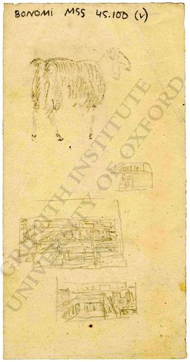 Sketches of sheep and urban landscape, probably ancient Egyptian temple